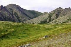 Forma de vida de Alaska Fotos de archivo libres de regalías