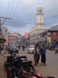 Forma de vida en Pyin Oo Lwin Imagenes de archivo