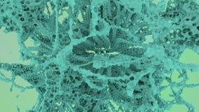 Forma de vida extranjera abstracta Ramas de la ciencia ficci?n del crecimiento de la DNA del invasor del espacio V?deo incons?til almacen de video