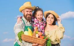 Forma de vida de la familia del campo Mercado de la granja con el granjero r?stico barbudo del hombre de la cosecha de la ca?da c fotografía de archivo