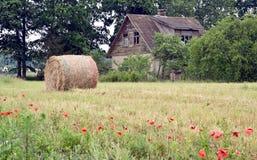 Forma de vida rural Imagen de archivo libre de regalías