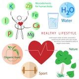 Forma de vida sana infographic: actividad, nutrición, resto Imágenes de archivo libres de regalías