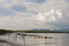 Forma de vida Tailandia meridional Foto de archivo libre de regalías