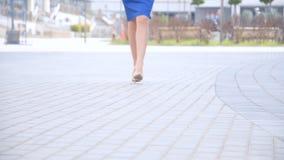 Forma de vida tirada de caminar femenino joven hermoso de las piernas almacen de metraje de vídeo