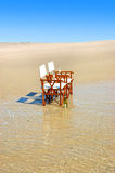 Forma de vida tropical de la playa Imagen de archivo