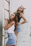 Forma de vida y concepto de la gente: Retrato de la moda de dos mejores amigos elegantes de las muchachas que llevan las faldas d Foto de archivo