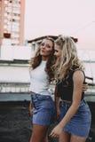 Forma de vida y concepto de la gente: Retrato de la moda de dos mejores amigos elegantes de las muchachas que llevan las faldas d Foto de archivo libre de regalías