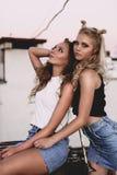 Forma de vida y concepto de la gente: Retrato de la moda de dos mejores amigos elegantes de las muchachas que llevan las faldas d Imagenes de archivo