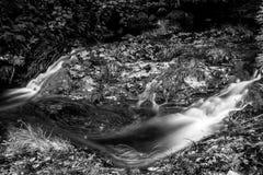 Forma del agua, en blanco y negro imagen de archivo