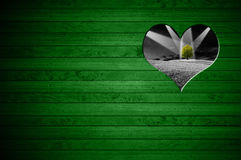 Forma del corazón cortada en la pared de madera verde Imagenes de archivo