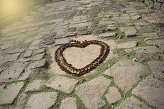 Forma del corazón de la flor Imagen de archivo