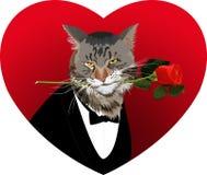 Forma del corazón, gato y una rosa roja Fotos de archivo libres de regalías
