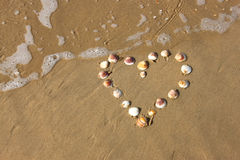 Forma del corazón hecha de cáscaras del mar en la playa arenosa. sitio para el texto. Fotos de archivo libres de regalías