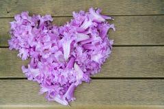 Forma del corazón hecha de la flor púrpura Imagen de archivo libre de regalías