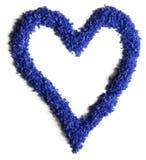 Forma del corazón hecha de las flores (acianos) en el fondo blanco Foto de archivo libre de regalías