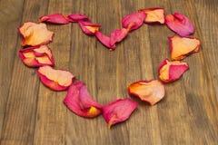 Forma del corazón hecha del pétalo color de rosa seco Imágenes de archivo libres de regalías