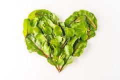 Forma del corazón hecha fuera de las hojas de la ensalada Imagen de archivo