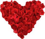 Forma del corazón hecha fuera de los pétalos color de rosa aislados encendido Fotos de archivo libres de regalías