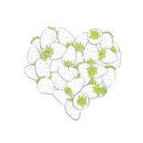 Forma del corazón por las fresas Imagen de archivo