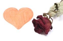 Forma del corazón y rosa secada del rojo en el fondo blanco Fotos de archivo libres de regalías