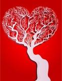 Forma del cuore dell'albero Fotografia Stock