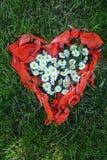 Forma del cuore fatta dai fiori della margherita e dalle foglie del papavero fotografie stock