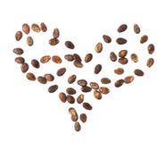 Forma del cuore fatta dei semi dell'anguria Immagini Stock