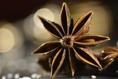 Forma della stella dell'anice Immagini Stock Libere da Diritti