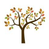 Forma di Autumn Tree Illustrazione di vettore Fotografia Stock