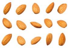 Forma differente dei dadi crudi delle mandorle isolata su bianco Fotografia Stock Libera da Diritti