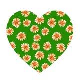 Forma do coração com as margaridas alaranjadas amarelas foto de stock royalty free