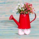 Forma do coração com a lata molhando vermelha Ainda vida 1 Fotos de Stock Royalty Free