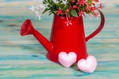 Forma do coração com a lata molhando vermelha Ainda vida 1 Fotografia de Stock Royalty Free