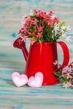 Forma do coração com a lata molhando vermelha Ainda vida 1 Imagens de Stock