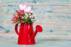 Forma do coração com a lata molhando vermelha Ainda vida 1 Foto de Stock Royalty Free