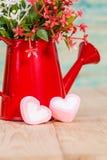 Forma do coração com a lata molhando vermelha Ainda vida 1 Foto de Stock