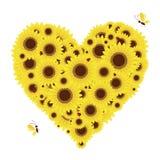 Forma do coração com os girassóis para seu projeto Imagens de Stock Royalty Free