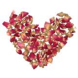 Forma do coração de Rosa fotografia de stock