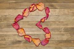 Forma do coração feita da pétala cor-de-rosa seca Fotografia de Stock