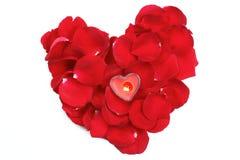 Forma do coração feita fora das pétalas cor-de-rosa Fotos de Stock