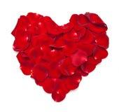A forma do coração feita fora de levantou-se Fotografia de Stock Royalty Free