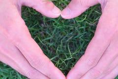 Forma do coração no formulário da mão de grama na forma nos fundos da grama, conceito do coração do Dia da Terra do mundo Fotografia de Stock Royalty Free