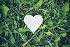 Forma do coração no fundo da grama Fotos de Stock Royalty Free