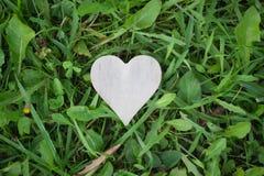 Forma do coração no fundo da grama Fotos de Stock