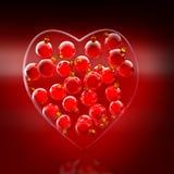Forma do coração dos baubles do Natal no vermelho e no ouro Fotografia de Stock Royalty Free