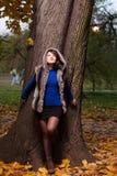 Forma do outono como o por do sol Fotografia de Stock