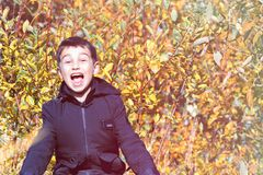 Forma do ` s das crianças roupa do ` s das crianças do outono um menino em um revestimento preto em um fundo amarelo Estilo infor fotografia de stock royalty free