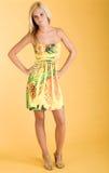 Forma do vestido Imagem de Stock Royalty Free