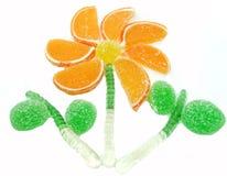 Forma dolce creativa del fiore dell'alimento della gelatina di frutta della marmellata d'arance Fotografie Stock
