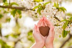 Forma fêmea do coração das mãos no alargamento da luz do sol do bokeh do verde da natureza e no fundo do sumário da folha do borr foto de stock royalty free